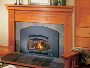 Fireplace Xtrordinair 32 DVS GSR Insert | The Energy House