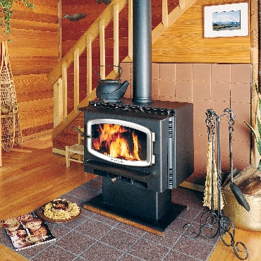 Freestanding Wood and Gas Stoves | The Energy House
