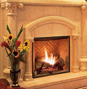 TC36 Gas Fireplace