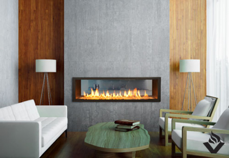 WS54 See-Thru Fireplace